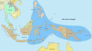 The Coral Triangle, the richest place on Earth and its boundaries